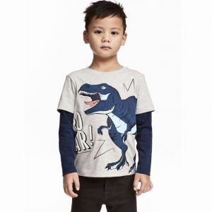 Cool Boys Dino Long Sleeved Top